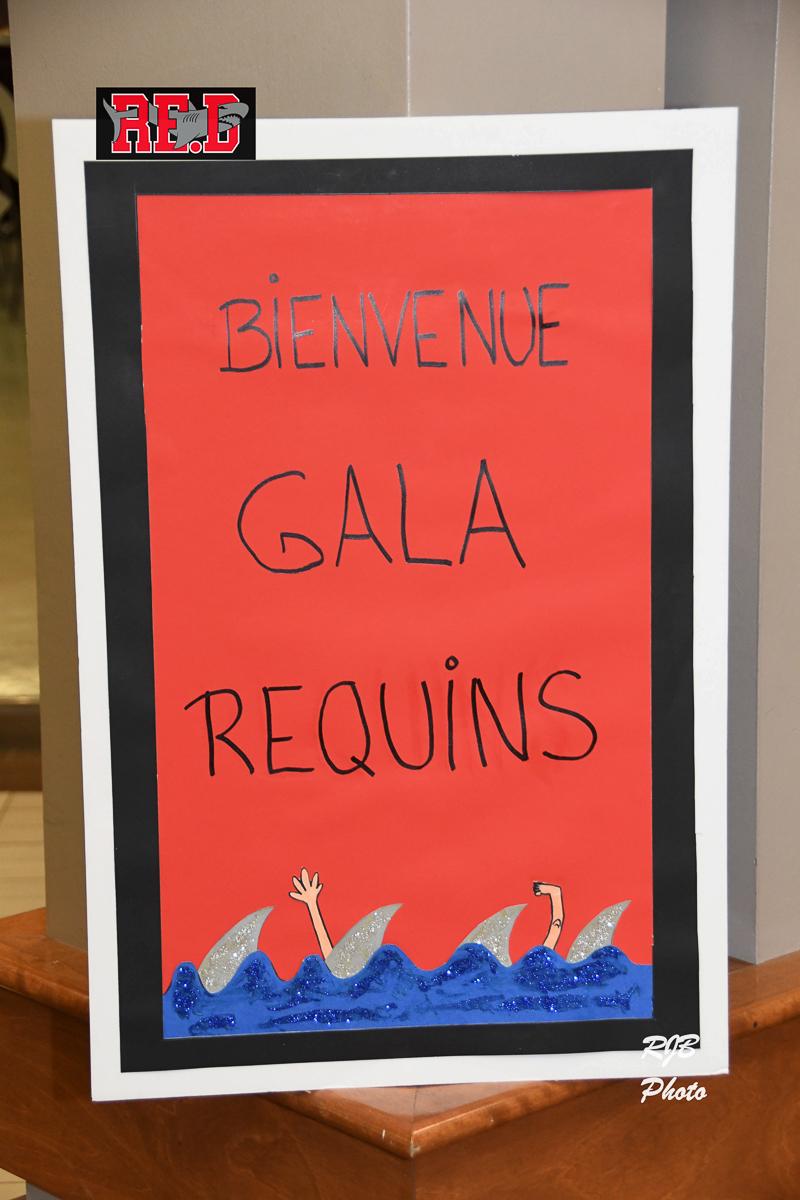 Requins-Gala-2017-R-Borris-9